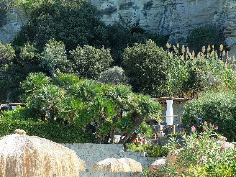 Die Insel Ischia wird auch Isola Verde (die grüne Insel) genannt. Überall duftet es nach Käutern